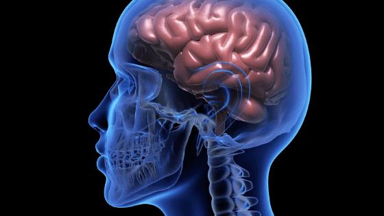 Traumatic Brain Injury for Veterans