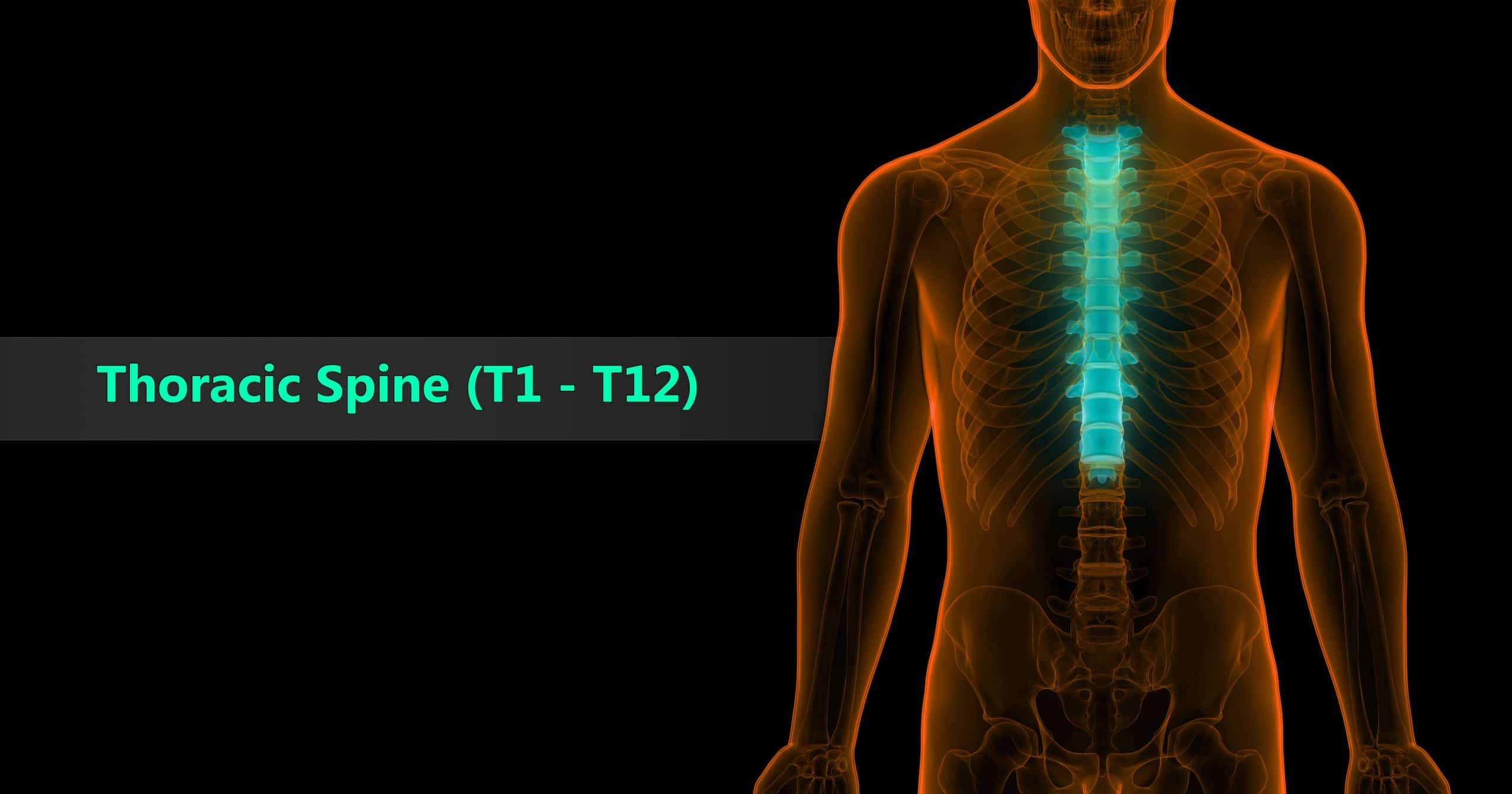 Thoracic Spine VA Rating
