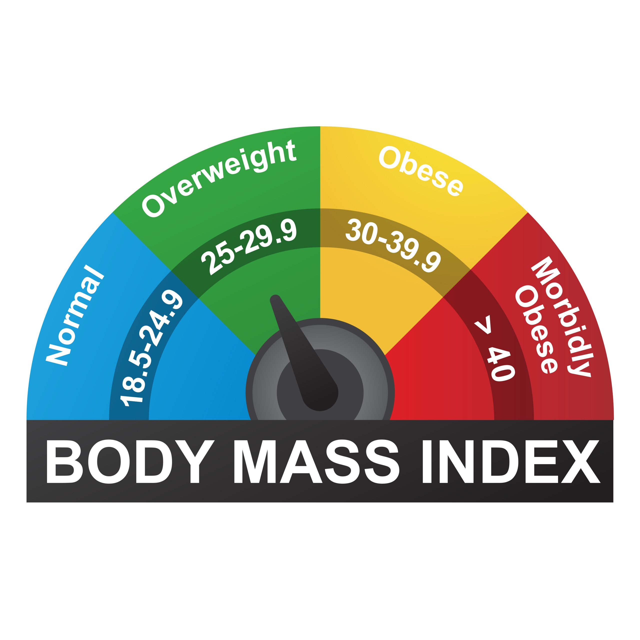 """How Obesity can be an """"Intermediate Step"""" for Secondary Service Connection Body Mass Index Obesity  scaled"""