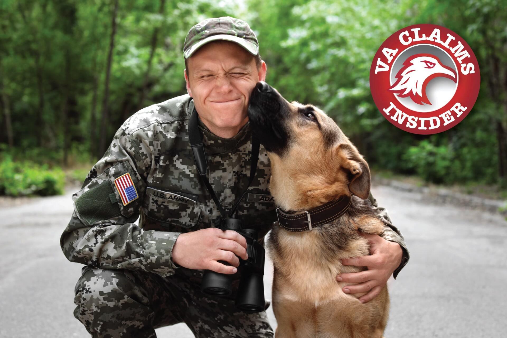 Service Dog Veteran Charities
