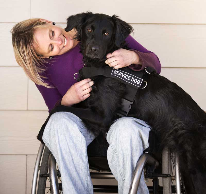 Woman in chair, smiles at dog