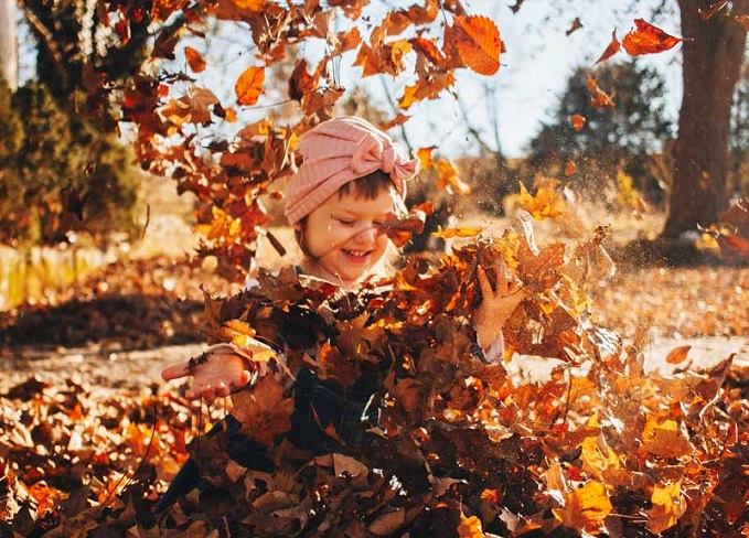 child, with pink bow in hair, plays in autumn leaf pile