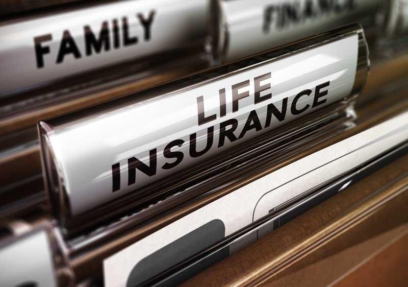 life insurance folders.X